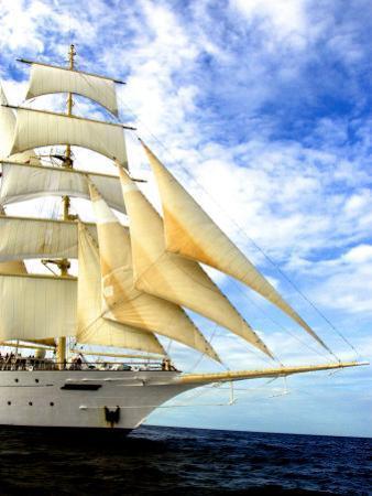 Star Clipper Under Sail