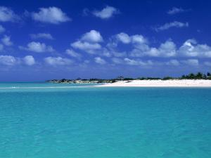 Tropical Scenic, Turks and Caicos Islands by Timothy O'Keefe