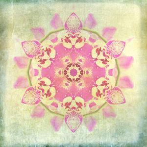 Orchid Circle 2 by Tina Carlson