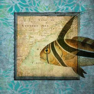 Rooster Fish Map by Tina Carlson