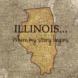 Story Illinois by Tina Carlson