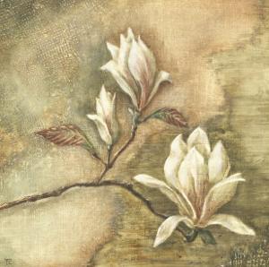 Burlap Magnolia I by Tina Chaden