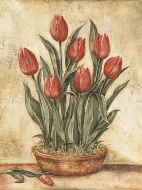 Potted Tulips by Tina Chaden