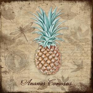 Ananas Comosus by Tina Lavoie