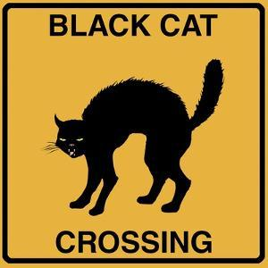 Black Cat Crossing by Tina Lavoie