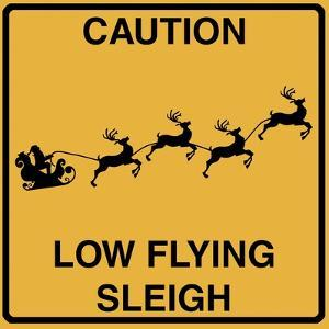 Low Flying Sleigh by Tina Lavoie