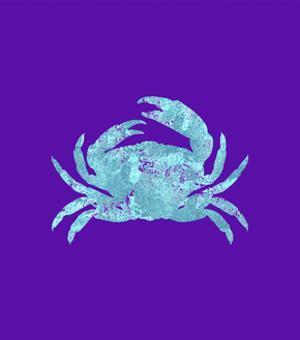 Sponge Crab Aqua by Tina Lavoie