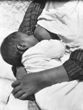Baby Nursing (Conchita with Her Mother Luz Jimenez), Mexico City, 1926 by Tina Modotti