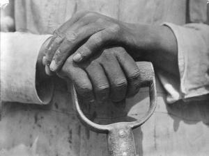 Hands of a Construction Worker, Mexico, 1926 by Tina Modotti