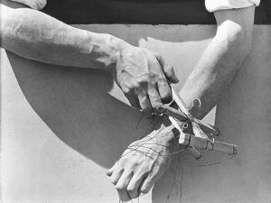 Hands of the Puppeteer, 1929 by Tina Modotti