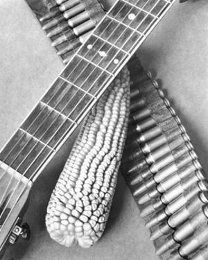 Mexican Revolution, Guitar, Corn and Ammunition Belt, Mexico City, 1927 by Tina Modotti