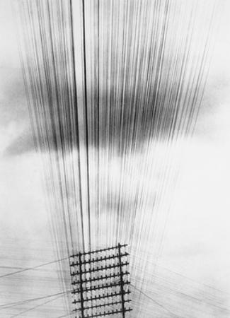 Telephone Wires, Mexico, 1925 by Tina Modotti