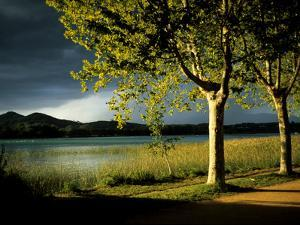 An Approaching Storm and Sunlight on Trees Alongside Lake Banyoles by Tino Soriano