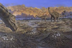 Titanosaur Nesting Site, Mid-Cretaceous Period of South America.