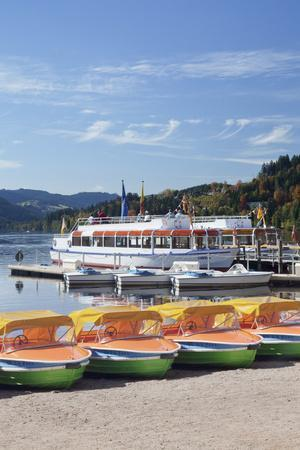 https://imgc.allpostersimages.com/img/posters/titisee-titisee-neustadt-black-forest-baden-wurttemberg-germany_u-L-Q1EY3Q70.jpg?artPerspective=n