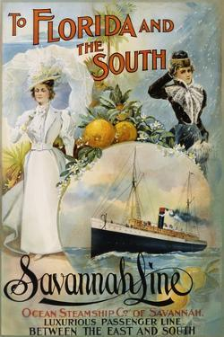 To Florida and the South - Savannah Line Poster