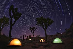 Illuminous Light Painted Landscape of Camping and Stars in Joshua Tree National Park by tobkatrina