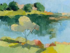 Cape Neddick by Toby Gordon