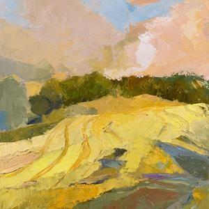 Overcast Farm Day by Toby Gordon