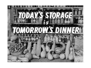 Today's Storage, Tomorrow's Dinner
