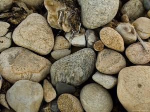 Close-Up of Rocks on a Beach, Block Island, Rhode Island by Todd Gipstein