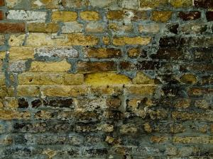 Close View of Aged Bricks on a Wall in Venice, Italy by Todd Gipstein