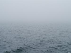 Fog over Block Island Sound, Rhode Island by Todd Gipstein