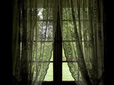 Looking Out the Window of a Log Cabin Through Lace Curtains by Todd Gipstein