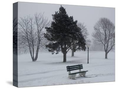 Park Bench by a Snow Covered Golf Course by Todd Gipstein