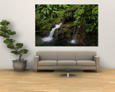 Two Small Waterfalls Flow into Fresh Water Pond in a Rain Forest by Todd Gipstein
