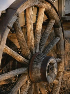 Wagon Wheel on Covered Wagon at Bar 10 Ranch Near Grand Canyon by Todd Gipstein