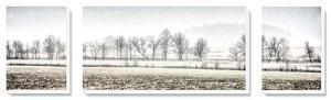 Winter Silence by Todd McPhetridge