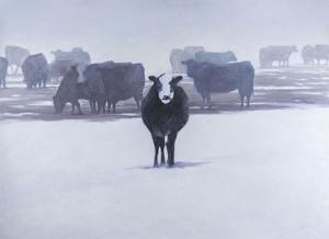 Cows in the Snow by Todd Telander
