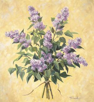 Lilac Season I by Todd Telander