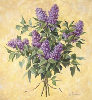 Lilac Season II by Todd Telander