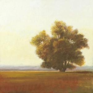 Lone Tree by Todd Telander