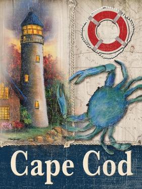 Cape Cod by Todd Williams