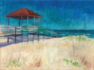 Coastal by Todd Williams