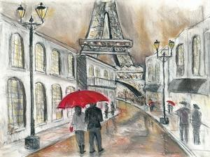 Rain in Paris by Todd Williams