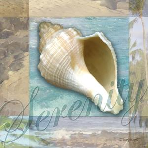 Serenity Shell by Todd Williams