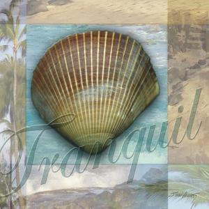 Tranquil Shell by Todd Williams