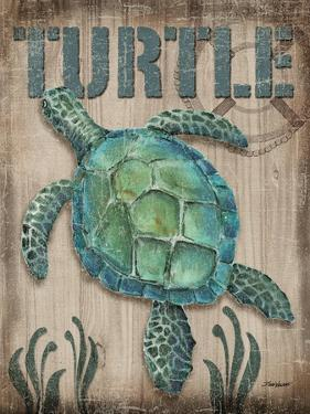 Turtle by Todd Williams