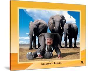 Elephant by Tom Arma