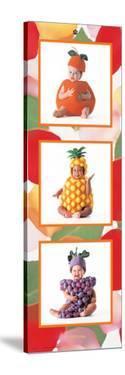Fruity Cuties by Tom Arma