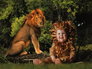 Imaginary Safari, Lion by Tom Arma