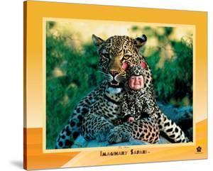 Leopard by Tom Arma