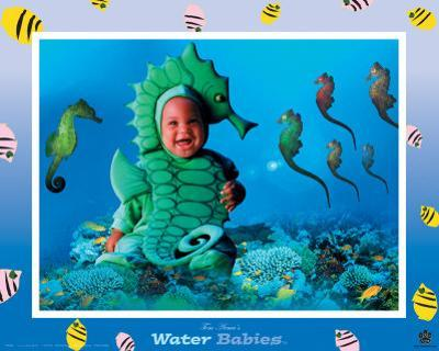 Water Babies, Seahorse by Tom Arma