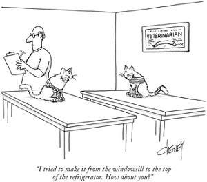 """""""I tried to make it from the windowsill to the top of the refrigerator. Ho…"""" - New Yorker Cartoon by Tom Cheney"""