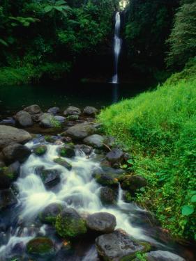 Water Streaming Over Rocks at Olemoe Waterfall, Olemoe Falls, Samoa by Tom Cockrem