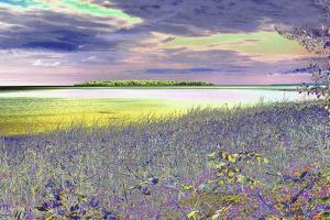 DSC0230-Autrain Island 5 by Tom Kelly